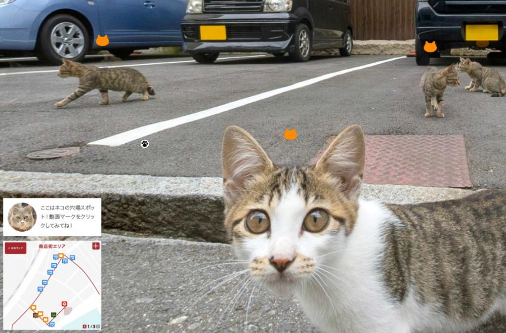 Onomichi - Cat Street View - WCIE5