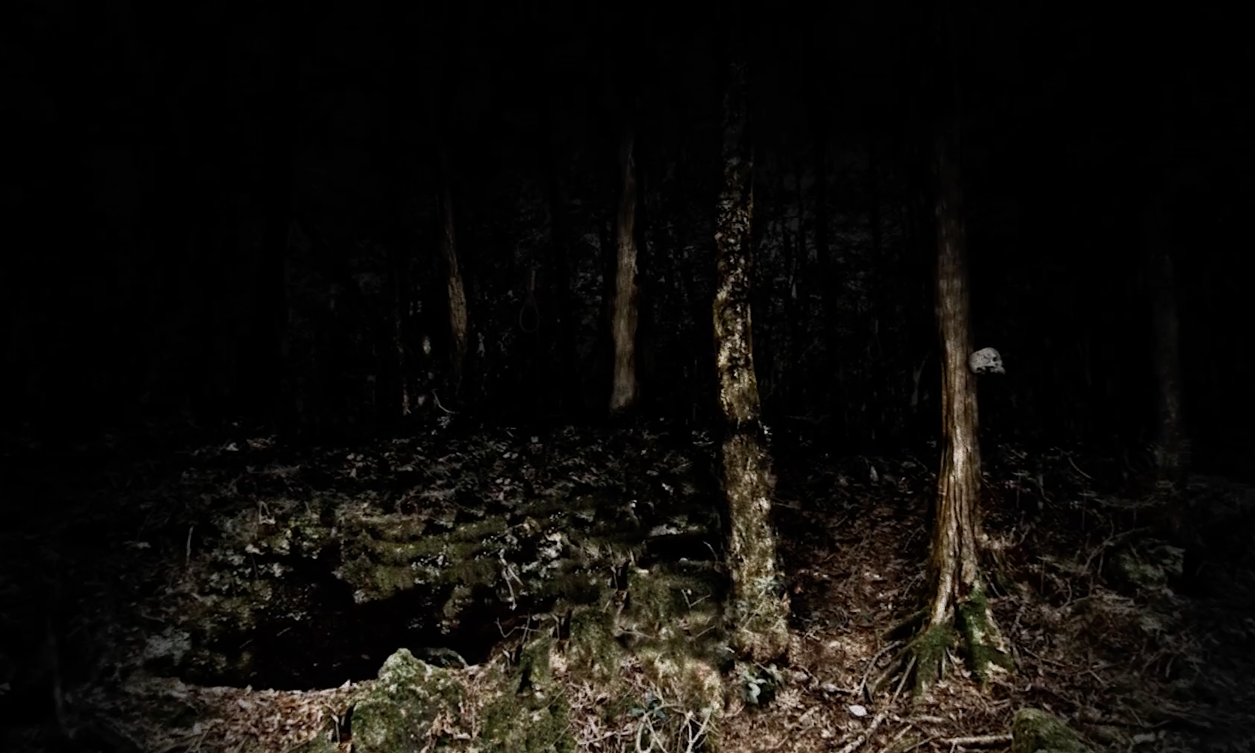 The Suicide Forest - Focus Features - wcie4
